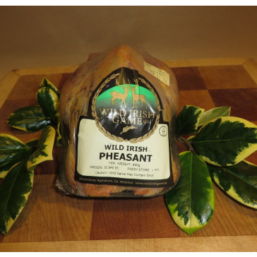 Irish Pheasant